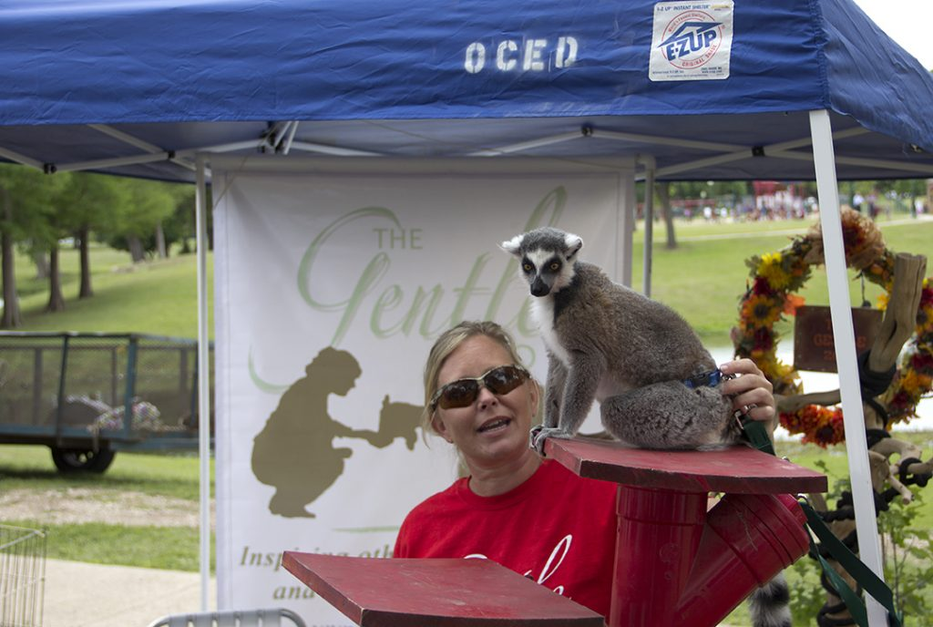 Earth Day - Lemur