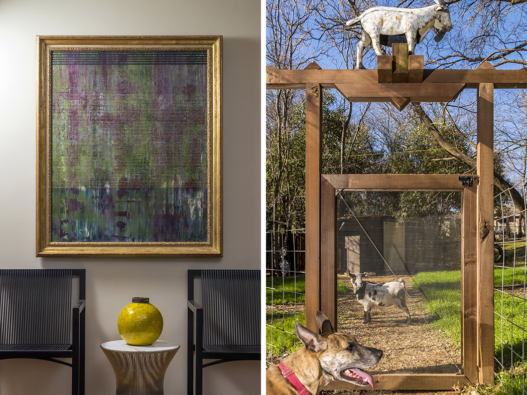 Top: Housecat Olive lounges in a sunny spot. Above left: This hallway vignette shows that modern and traditional can mix. Above right: Gream's two goats. (Photos by Danny Fulgencio)