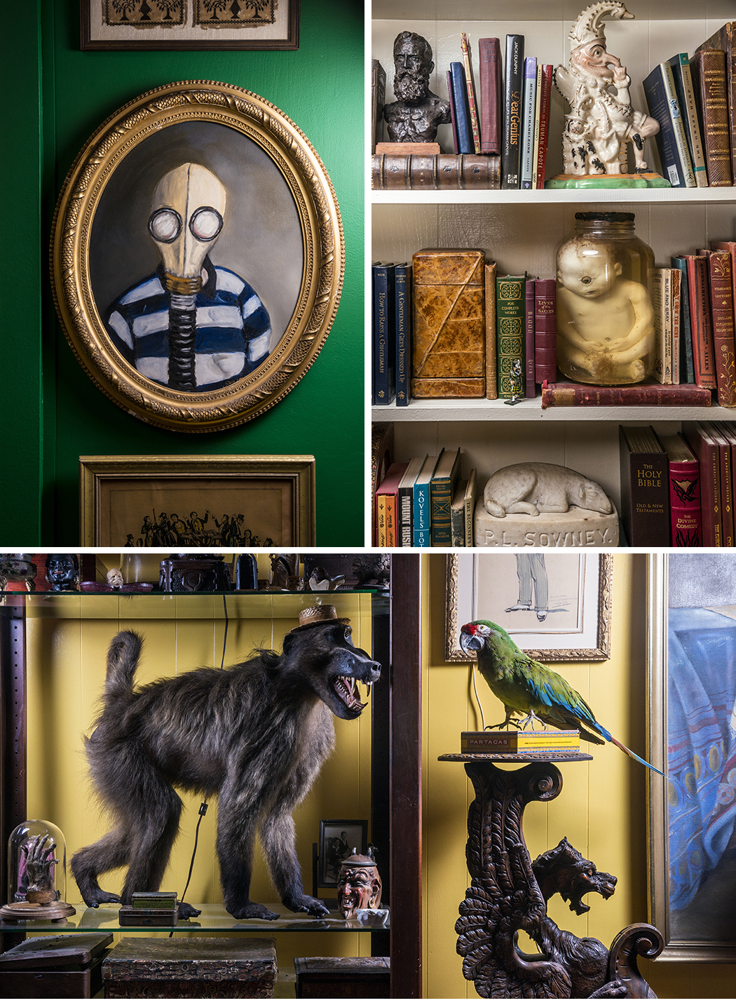 """Clockwise from top right: Shelves in the Bell-Hinkle home showcase possessions, including Bell's """"cyclops baby"""" in a jar, a carnival sideshow prop. Hinkle and Bell have collected enough antique taxidermy to stock a natural history museum. Hinkle has been collecting paintings for many years, and he has an eye for arranging them. (Photos by Danny Fulgencio)"""